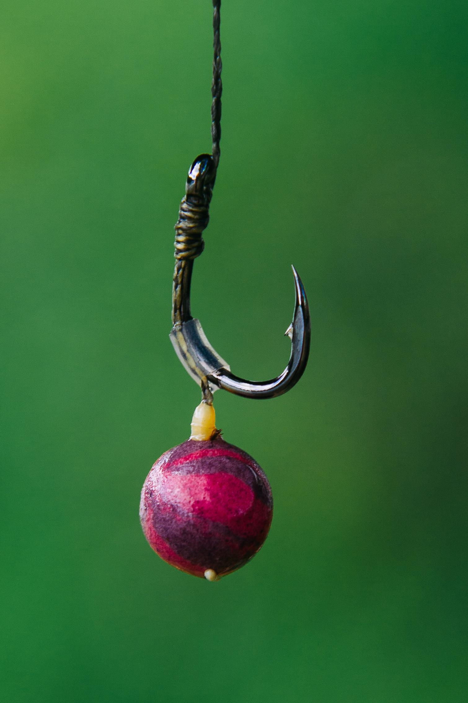 Снасти для ловли карпа на бойлы бойлов